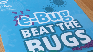 Beat the Bugs
